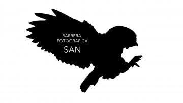 barrera fotográfica SAN R-16